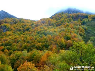Hayedos Parque Natural de Redes;a tu aire senderismo tiendas de montaña en madrid excursiones desde